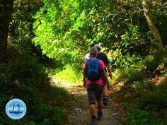 wandelen op Kreta tevoet hiking griekenland Crete Greece, Snorkelling, Walking In Nature, Greek Islands, Hiking, Hani, Beach, Summer, Walks