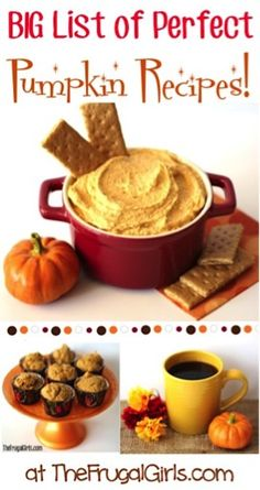 """Get inspired with some Perfect Easy Pumpkin Recipes! Enjoying one of these Easy Pumpkin Dessert Recipes is the perfect way to say """"Hello"""" to Fall! Best Pumpkin Bread Recipe, Pumpkin Spice Cake, Pumpkin Dessert, Pumpkin Recipes, Pumpkin Cheesecake, Cheesecake Pie, Dump Cake Recipes, Dessert Recipes, Desserts"""