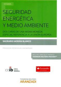 Seguridad energética y medio ambiente : dos caras de una misma moneda / Sagrario Morán Blanco / HD 9502 M79