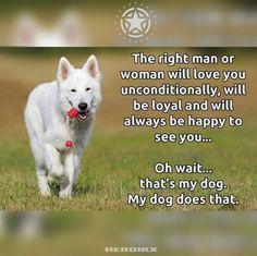 #Dog #quote #motivational