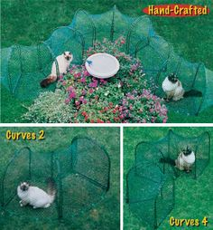 Website full of outdoor enclosures for indoor cats, some DIY. My clowder is very interested...