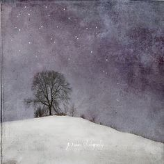 Chance and Circumstance by jamie heiden, via Flickr