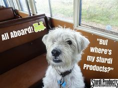 Whether you're traveling by car, plane or train, don't leave home without your #SturdiProducts! #PetTravel #PetProducts