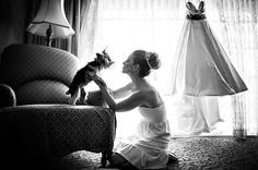 Junebug's Top 10 Cutest, Funniest and Most Lovable Dogs at the Wedding! Photo by: Susan Stripling