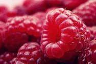 Raspberry Fragrance Oil