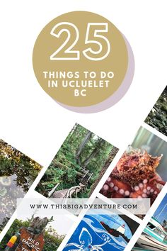 Here are 25 Things to do in Ucluelet, British Columbia. Including what to see, where to eat, as well as inexpensive and free activities, and more! Ucluelet Bc, Gourmet Hot Dogs, Stuff To Do, Things To Do, Fresh Off The Boat, Amazing Aquariums, Free Activities, I Want To Travel, We Fall In Love