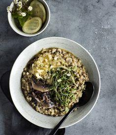 Få opskriften på den forrygende og cremede bygotto med svampe fra restaurant GRØD lige her!