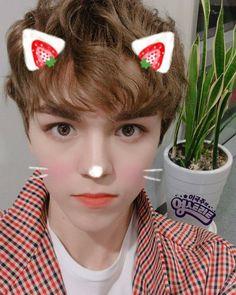 "Képtalálat a következőre: ""vernon cute pics"" Hoshi, Jeonghan, Wonwoo, Shinee, Vernon Seventeen, Choi Hansol, Vernon Hansol, Seventeen Memes, Seventeen Wallpapers"
