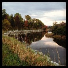 Our photo of the day is the from Antigonish Landing. Visit Nova Scotia, Landing, Photo Galleries, Leaves, Outdoors, River, Gallery, Outdoor, Outdoor Rooms