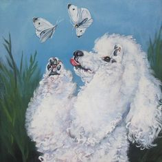 Poodle butterfly
