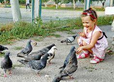 кормит голубей фото: 30 тыс изображений найдено в Яндекс.Картинках