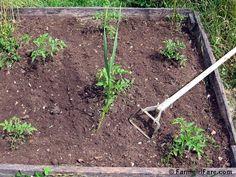 Resultado de imagen para jardines secos diseo JARDINES SECOS