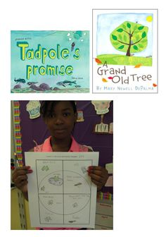 To address NGSS PE 3-LS1-1, students can create a visual model that shows the stages of a frog or tree's life cycle as well as the activities that occur at each stage.