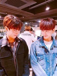 Jisung | Changbin