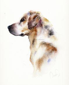 Labrador in watercolour by artist Jane Davies
