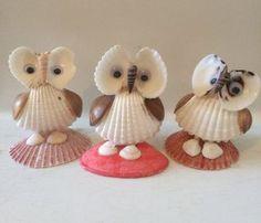 Seashell Owls