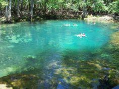 Manatee Springs State Park, Florida