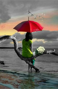 Umbrella as a decoration, matching it properly will make you more elegant and charming Splash Photography, Nature Photography, Splash Images, Umbrella Art, Photo D Art, Most Beautiful Wallpaper, Belle Photo, Background Images, Color Splash
