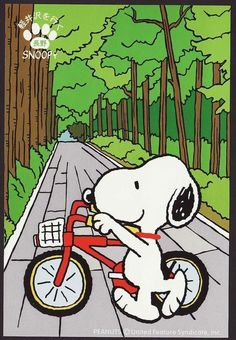 Snoopy Images, Snoopy Pictures, Peanuts Images, Peanuts Cartoon, Peanuts Snoopy, Snoopy Cartoon, Snoopy Love, Snoopy And Woodstock, Snoopy Wallpaper