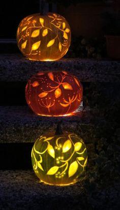 -neuer Gartentraum-: Halloween-Kürbis