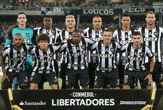 Botafogo (2017)
