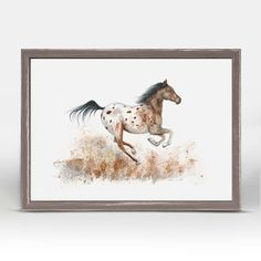 """Appaloosa"" Mini Framed Canvas from GreenBox Art + Culture. Size - 7''x5''. Rustic frame color is predetermined. We've got wall art for all ages and interests. Browse our entire collection of Mini Framed Canvas Wall Art for the home!"