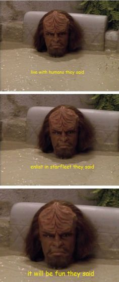 Federation Klingon Problems