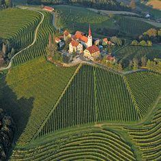 Jeruzalem Winery in Slovenia, via www.zoolz.com