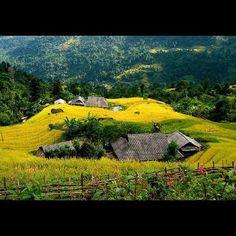 Vietnam photos, Vietnam beauty Vietnam Country, Beautiful Vietnam, Vietnam Travel, Garden Bridge, Cool Photos, Golf Courses, Scenery, Outdoor Structures, Island