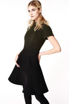 beautiful black and green ombre day dress ZAC Zac Posen Fall 2015 Ready-to-Wear - Collection - Gallery - Style.com