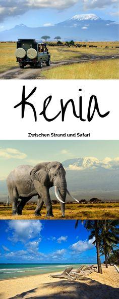 Safari, Wildnis und Tiere! An der ostafrikanischen Küste gelegen, gibt es neben Savanne und Wüste auch zahlreiche Traumstrände, die zum Verweilen einladen. Hier gibt es 3 überzeugende Gründe für eine Reise nach Kenia!