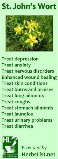 St. John's Wort benefits #nutritionquotesholistic