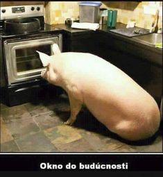 chudinek... | torpeda.cz - vtipné obrázky, vtipy a videa Sign, Google, Jokes, Signs, Board