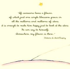 The Little Prince- my favorite book!