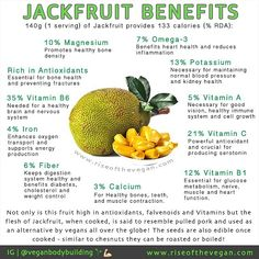 Have you tried jackfruit yet? Jack fruit is the largest fruit in the world weighing from 3 to 30 kg and has oblong or round shape measuring 10cm to 60cm in length 25 to 75cm in diameter! Each tree bears up to 250 jackfruits. It is a rich source of energy dietary fiber minerals and vitamins and free from saturated fats or cholesterol making it a healthy summer treat .  Many vegans around the world choose to harvest and cook the young green jackfruit as an alternative to pulled pork .  Health…