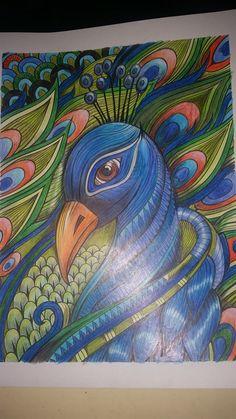 Inspirational coloring pages from Secret Garden, Enchanted Forest and other coloring books for grown-ups. Peacock. Páginas inspiradoras dos livros Jardim Secreto, Floresta Encantada e outros livros de colorir para adultos. Pavão