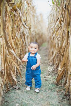 Variety of toddler overalls and underwear intended for durability and relaxation. Begin the process of exploring now! Little Boy Photography, Toddler Boy Photography, Autumn Photography, Fall Baby Pictures, Fall Photos Kids, Fall Pics, Toddler Boy Pictures, Pumpkin Patch Pictures, Boy Photo Shoot