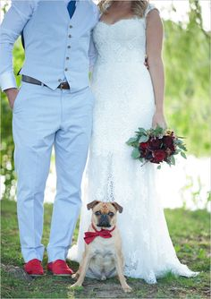 wedding dog/dogs.... this WILL happen. Molly and Shelby have been my life for a while, they will be a part of the best day of my life too!