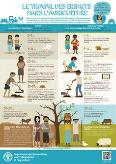 Le travail des enfants dans l'agriculture