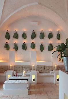Daphné Décor&Design - Le cactus en décoration intérieure: des idées pour s'inspirer- feuilles de cactus accrochés au mur