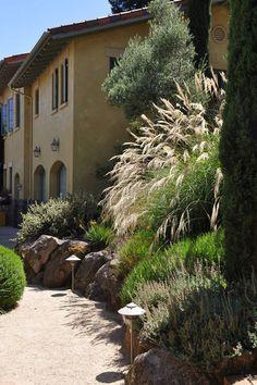 Maiden grass traditional landscape by Arterra LLP Landscape Architects