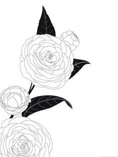Plus de 1000 id es propos de flowers illustration for Dessin minimaliste