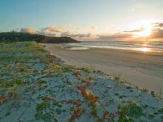 Sunrise at North Point - where better to crack a cold one and chill out? #wishiwasthere #moretonisland