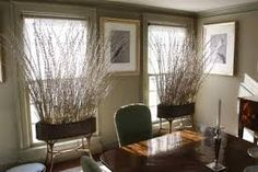 Image result for pussy willow planters