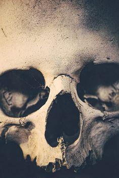 old skull.