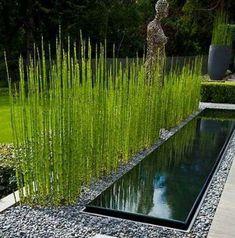 Garden Landscaping, Decoration, Patio, Landscape, Outdoor Decor, House, Design Ideas, Gardening, Gardens