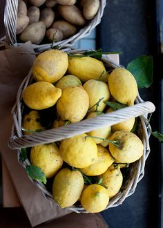 Lemons | Cavoletto di Bruxelles - Sigrid Verbert