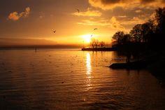 Sonnenuntergang am Bodensee