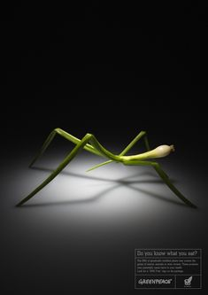 """BBDO Moscow created these interesting advertisements for Greenpeace to educate consumers about genetically modified foods. They made creatures out of vegetables to emphasize the theme of their campaign """"Do you know what you eat?"""""""