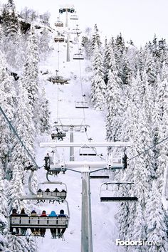 The 12 Most Terrifying Ski Runs on the Planet Snowboarding, Skiing, Snow Bunnies, Winter Travel, Where To Go, Scary, Planets, Trail, Traveling